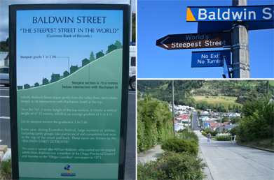 These are photographs of Baldwin Street in Dunedin, New Zealand.