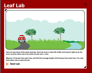 """An image of the opening screen of a simulation is shown. The simulation is titled """"Leaf lab."""" Within the image, a car, road, grassy field, trees, shrubs, and a stream are shown. Instructions are written below the diagram."""